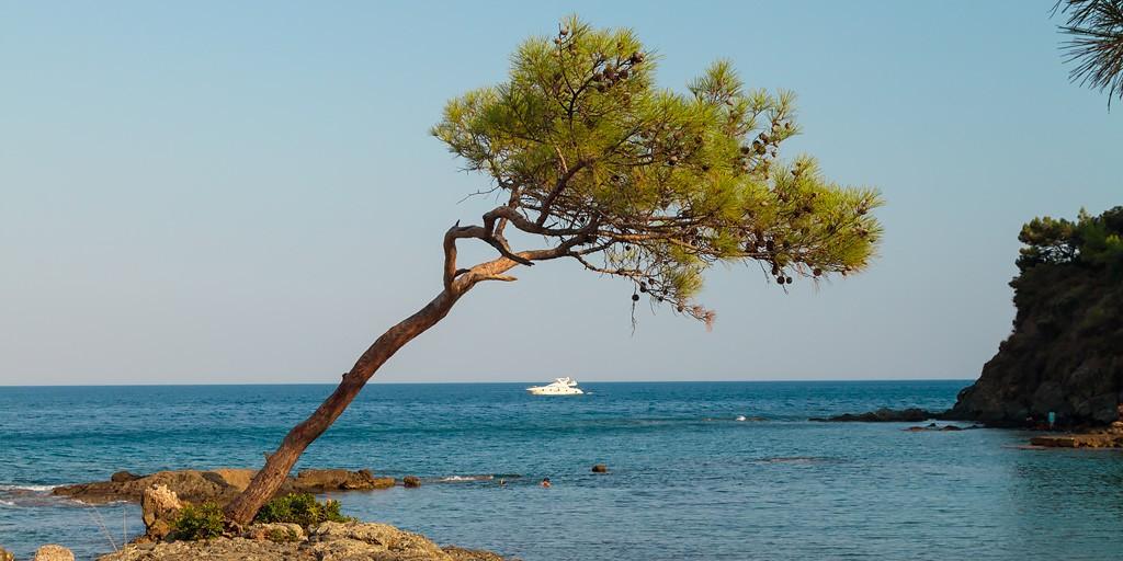 Заграничный отдых с диализом  выгодные предложения и